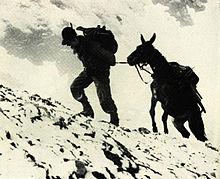 Alpino e mulo in Albania.