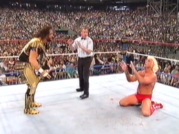 WM8 Savage Vs Flair.png