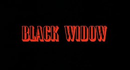 Black Widow 1987.jpg