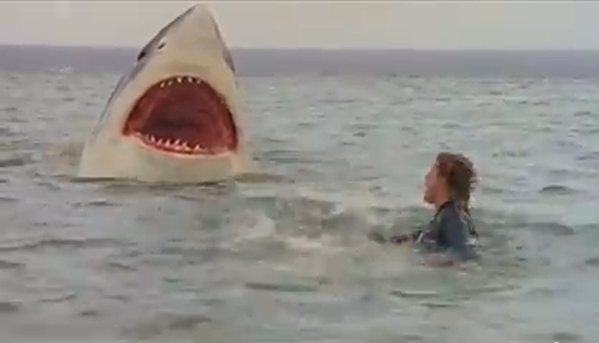 lultimo squalo wikipedia