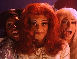 Stonewall Film