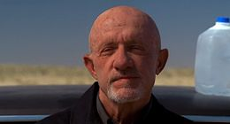Mike Ehrmantraut.jpeg
