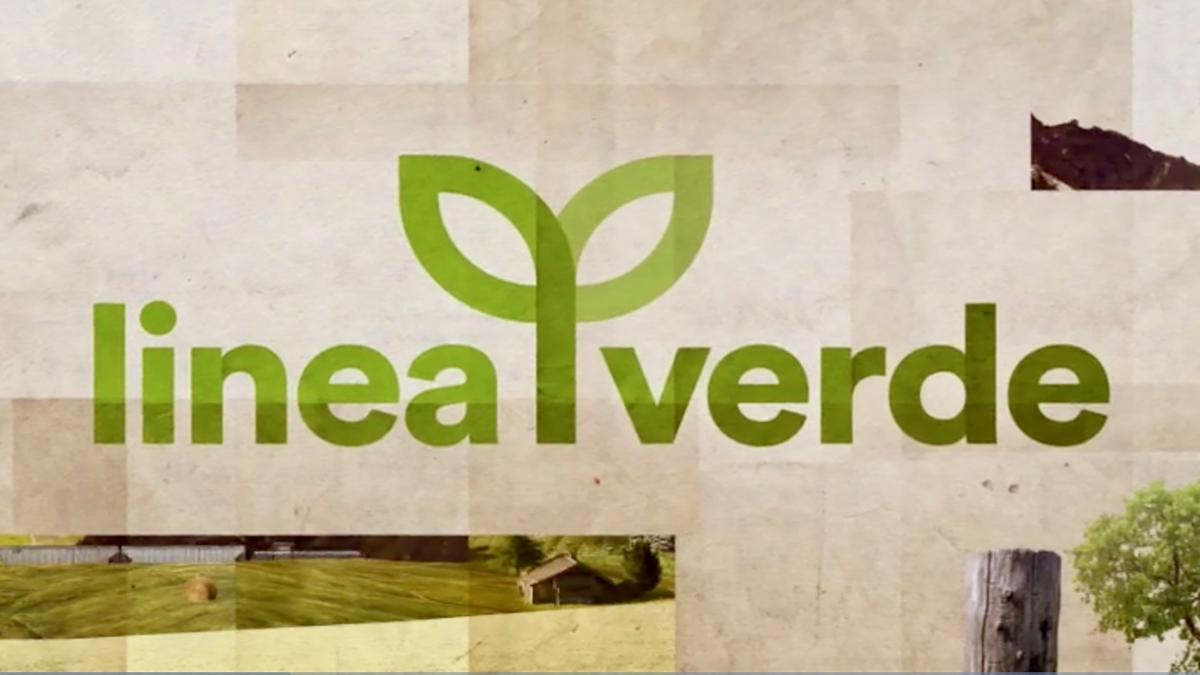 Linea verde programma televisivo wikipedia for Linea verde favaro