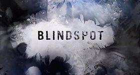 Blindspot serie TV.jpg