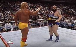 Royal Rumble 1991.JPG