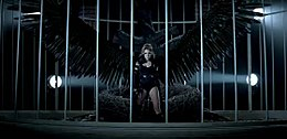 Can't Be Tamed (video).jpg
