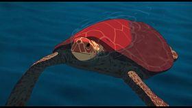 La tortue rouge.jpg