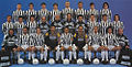 Juventus Football Club 1994-1995.jpg
