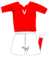 Varese Home Kit 2010-2011.PNG