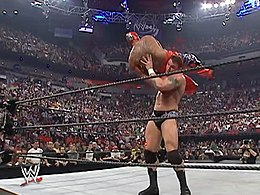 Royal Rumble 2006.jpg