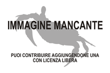 Immagine di Remipedia mancante