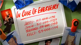 In Case of Emergency - Amici per la pelle.png