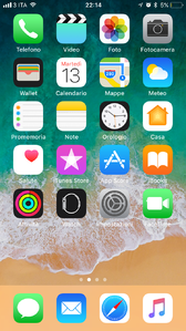 IOS 11 Home.png
