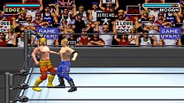 WWF Road to WrestleMania.jpg