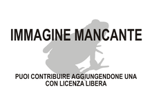 Immagine di Keraterpeton mancante