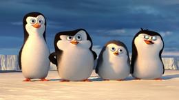 Buon Natale Madagascar.I Pinguini Di Madagascar Film Wikipedia