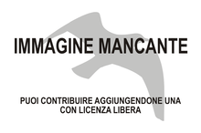 Immagine di Anthropornis mancante