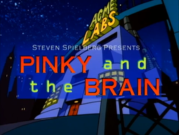 Pinky and the Brain.png