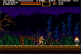 Castlevaniachronicles.png