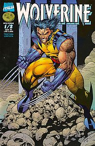 Wolverine (Jim Lee).jpg