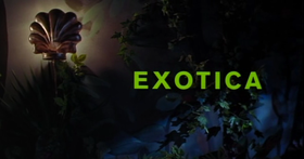Exotica.png