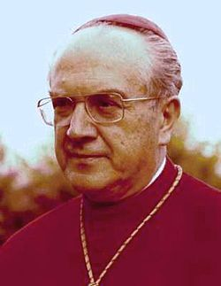 Cardinale-sebastiano-baggio.jpg