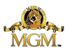 The MGM Channel.png