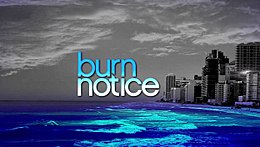 Burnnotice.jpeg
