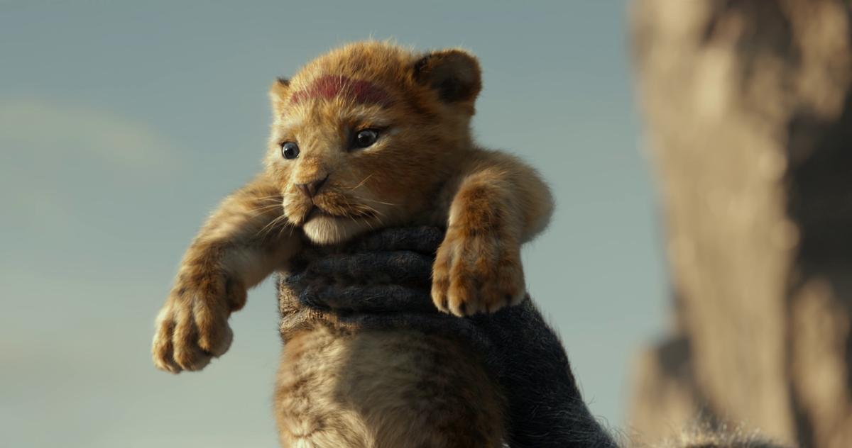 Il re leone (film 2019) - Wikipedia