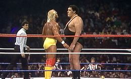 WM3 - Hogan Vs Andre.jpg