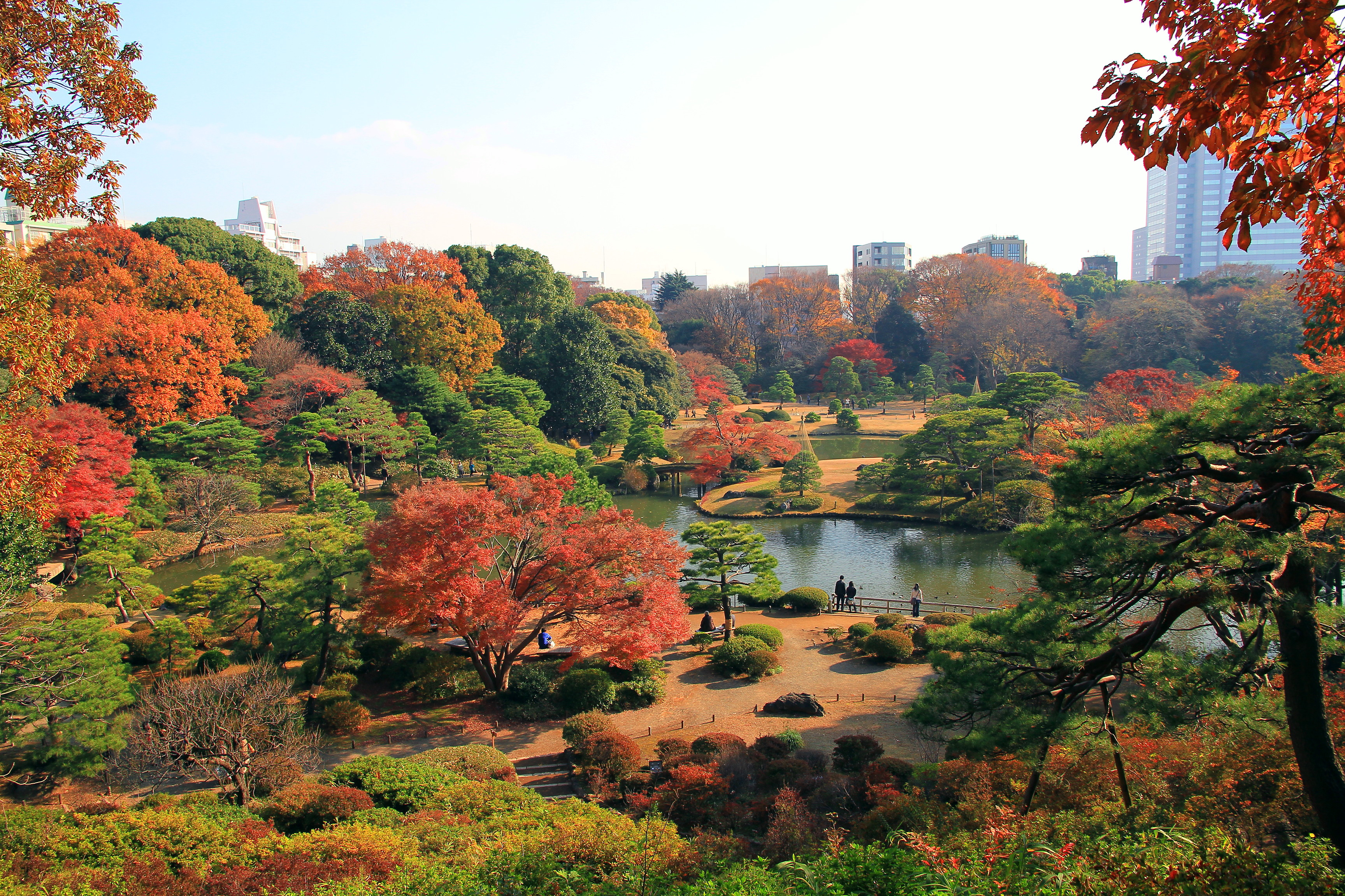 Bunkyo rikugien panoramic view in late autumn 1