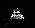 Night view of Osaka Castle.jpg