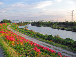 Kawajima Oppe River And Spider Lily 1.JPG