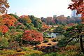 Bunkyo Rikugien Panoramic View In Late Autumn 1.JPG