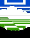 Jurnal manfaat mikoriza pada tanaman sengon
