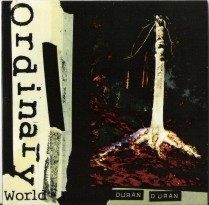 Ordinary World ყდა