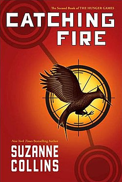Catching fire book.JPG
