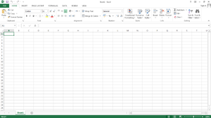 Microsoft Excel 2013 Default Screen.png