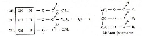 May formulasy.jpg