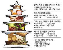 Korean adult food pyramid