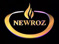 Newroztv.png
