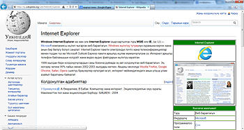 Windows Internet Explorer 9.jpg