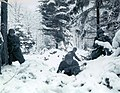 775px-Ardennenoffensive - Battle of the Bulge.jpg