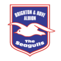 Brighton hove albion badge.png