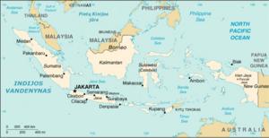 dvejetainis variantas indonezija ismail)