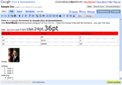 GDocs and Spreadsheets screenshot.png