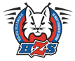 Hockeyslovenia.PNG
