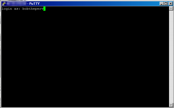 File:Putty command window.png