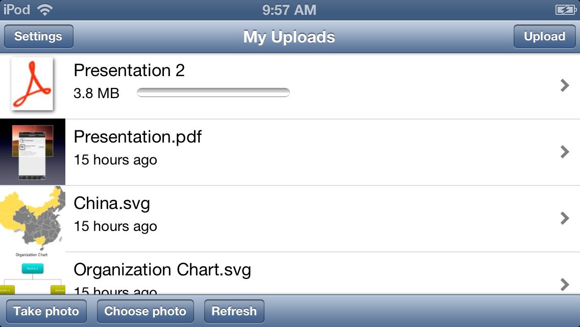 screen shot of a pdf