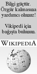 Wikipedia-banner-240-tr.png